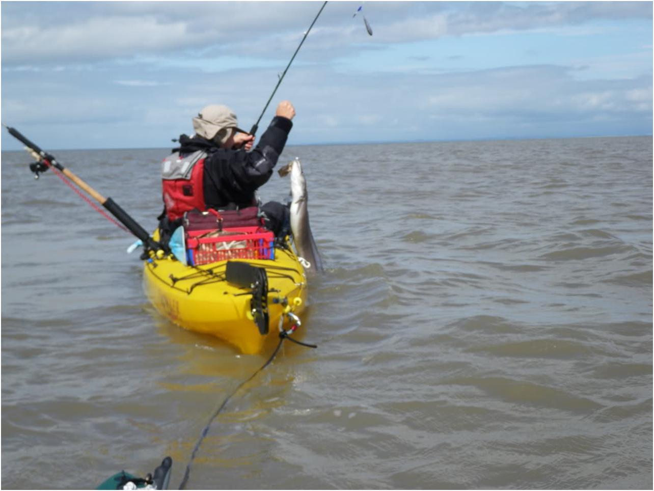 Yak bass at blue anchor dizzyfish kayak fishing for Kayak bass fishing