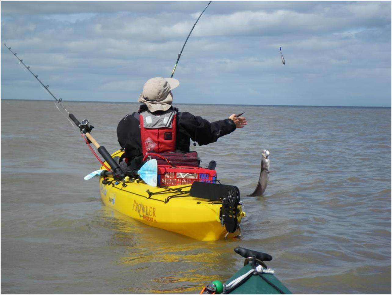 Yak bass at blue anchor dizzyfish kayak fishing for Fishing kayak anchor