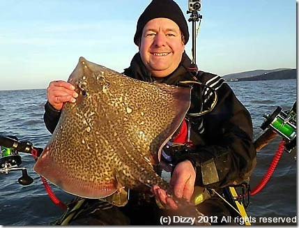 Bristol channel ray from the kayak
