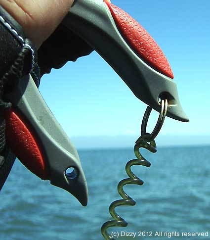 Handy leash for kayak fishing