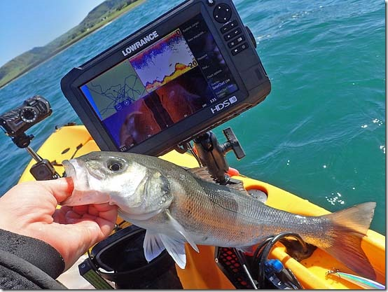 Lowrance HDS 9 Carbon fish finder